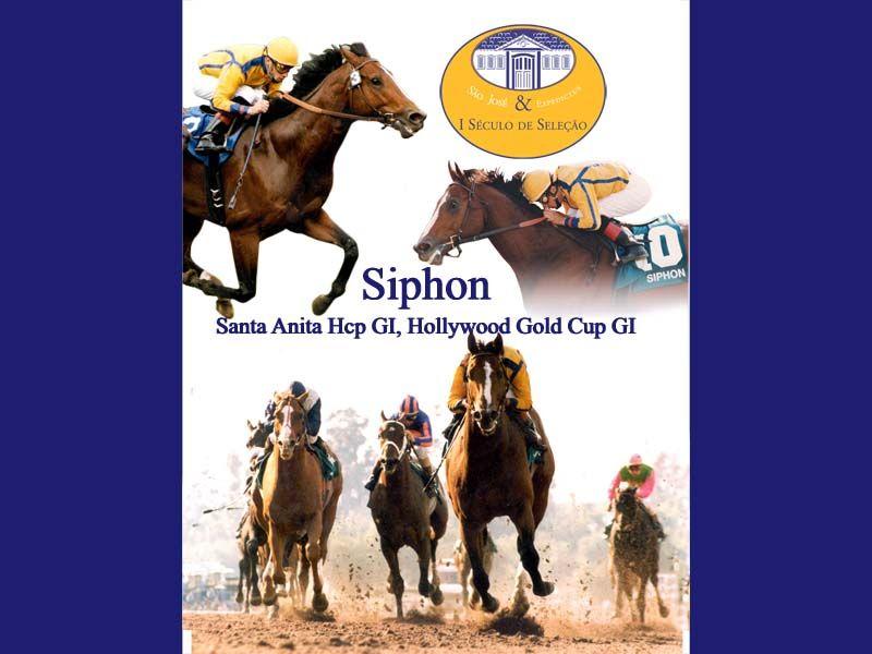 Banner Siphon